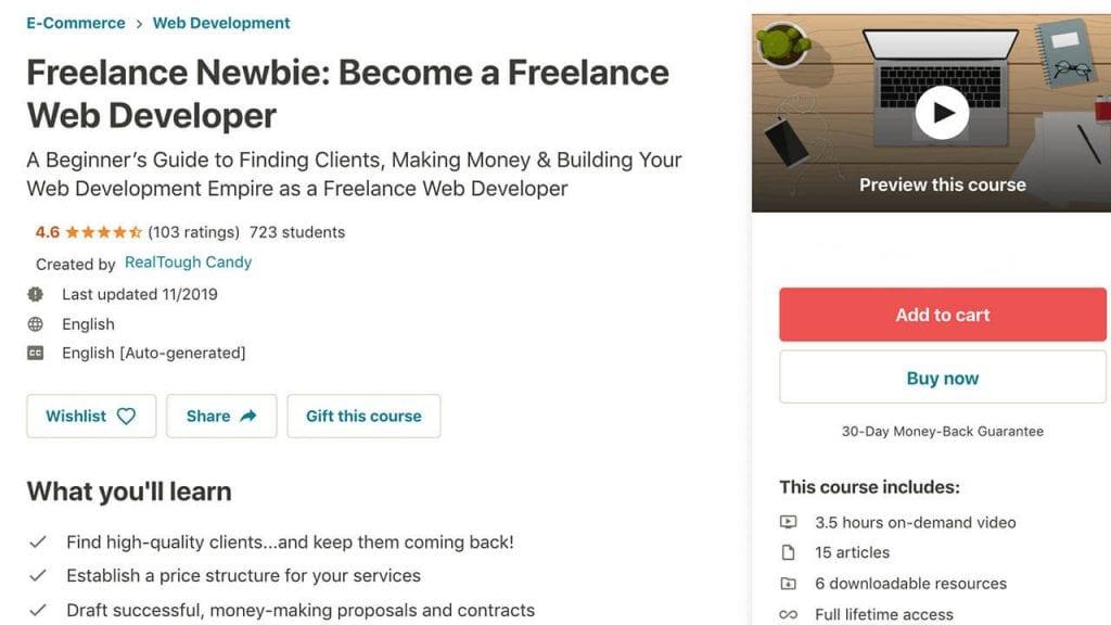 "screenshot of Udemy course ""Freelance Newbie: Become a Freelance Web Developer"""