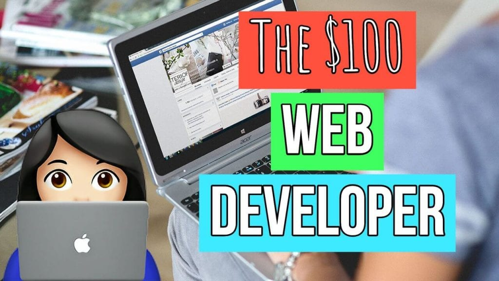 image of computer and cartoon woman with another computer with overlying text The $100 Web Developer