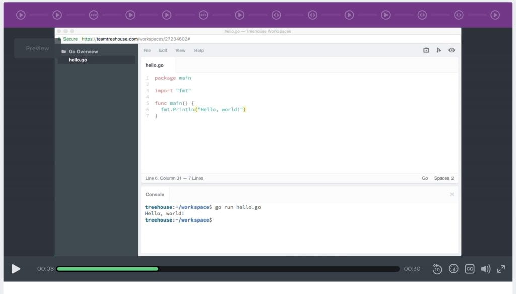 Team Treehouse screenshot of Golang Course lecture